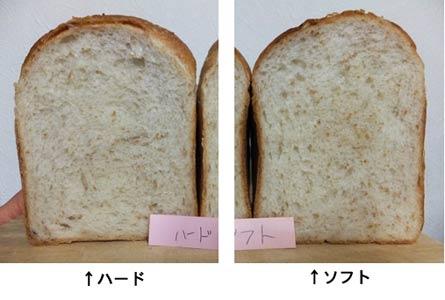 blog270.jpg